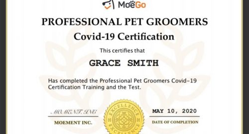 COVID Safety Certificate